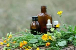 צמחי מרפא למתח וחרדה